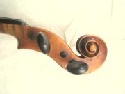 Geige Meisterinstrument Sachsen